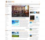 Светлая новостная тема wordpress: EndoMag