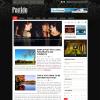 Клубная тема wordpress от Newwpthemes: Partido