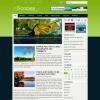 Яркий шаблон для wordpress: Scopes