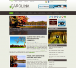 Новостной шаблон для wordpress: Carolina