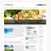 Новостной шаблон без графики: Intensa