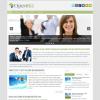 Бизнес шаблон для wordpress: OpenBiz