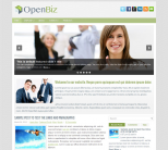 Бизнес шаблон для wordpress: OpenBiz