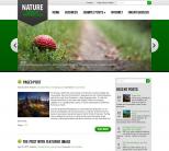 Зеленая тема для wordpess: Nature