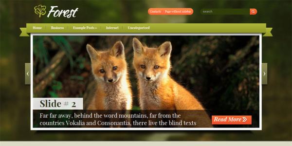 Природа в шаблоне wordpress: Forest